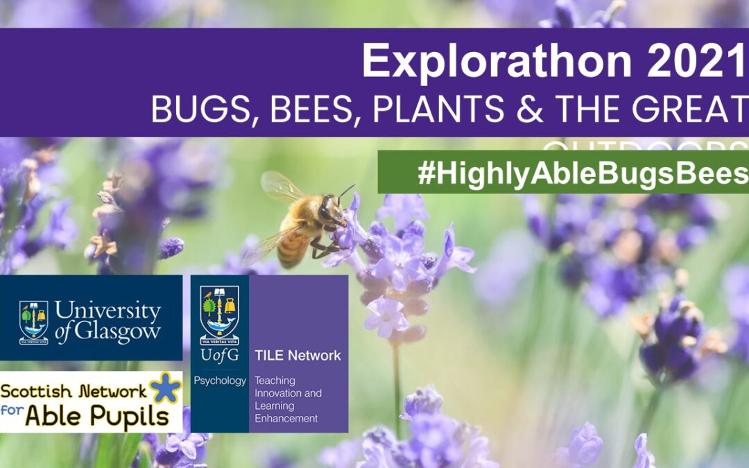 Explorathon 2021: Bugs, Bees, Plants and The Great Outdoors – A Summary